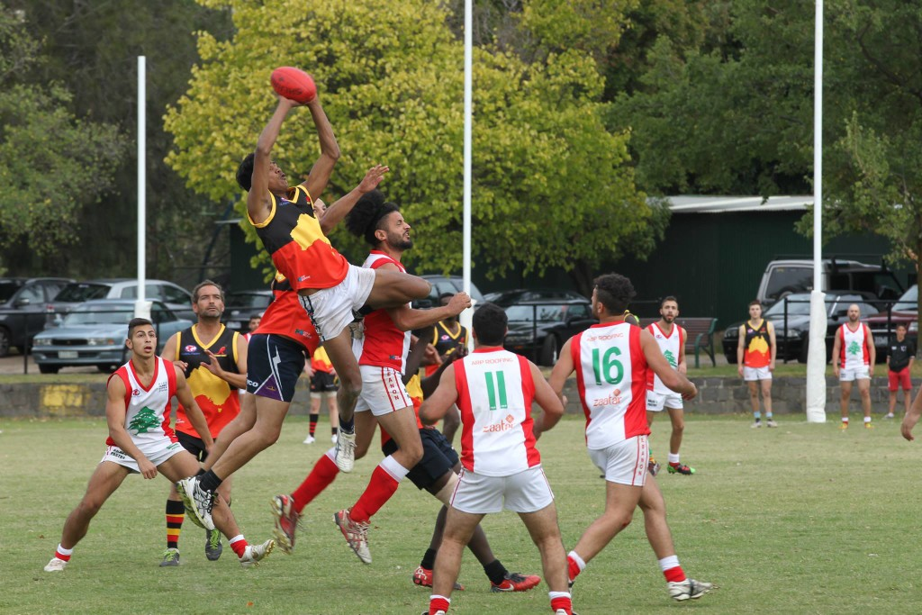 Harmony Cup AFL