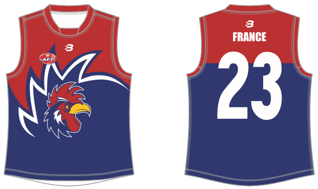 France footy jumper AFL